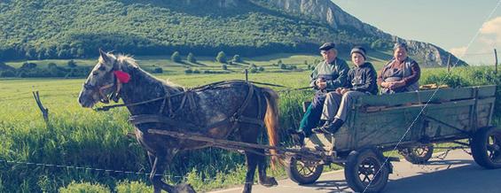 About Enjoy Romania