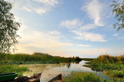 8 Days, Danube Delta