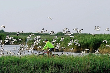5 Days Danube Delta